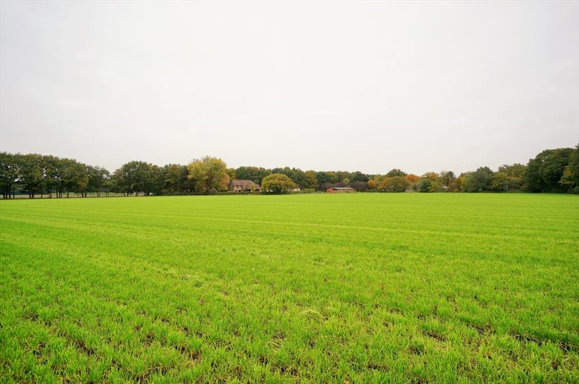 Farm sold in Westerlo