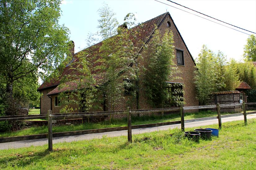 Farm with storage and outbuilding on approximately 6,6 ha in Herselt