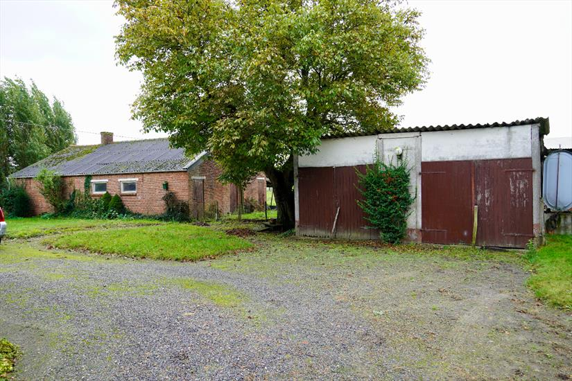 House to renovate with outbuildings and meadow on approximately 91a in Hoogstraten