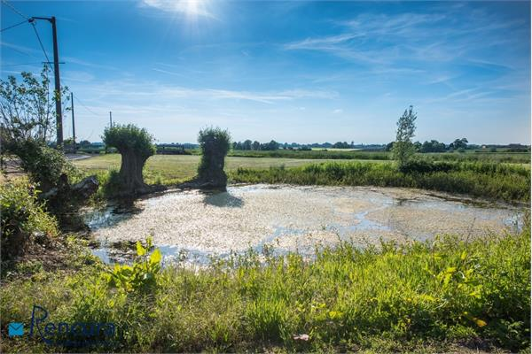 Dwelling for sale in Steenvoorde