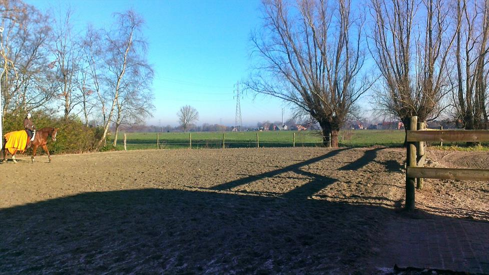 Pasture land sold in Waarloos